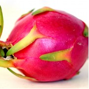 Dragon Fruit 火龙果
